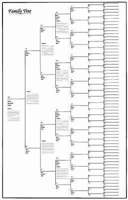 "5 Pack of Large Family Tree Charts 24"" x 36"""