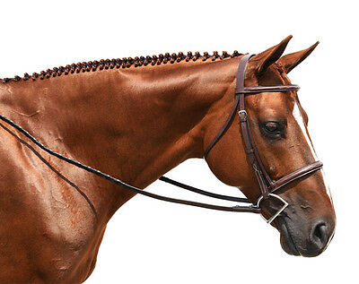 Toulouse Working Hunter Bridle Chocolate XFull