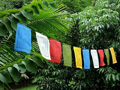 Medicine Buddha prayer flags Tibetan with English Translation High Quality 6X8""