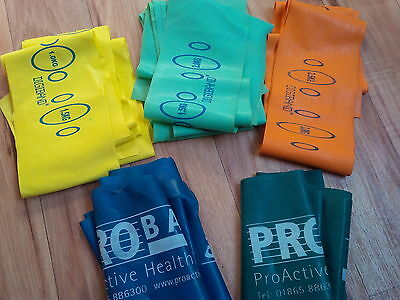 14 x weighted exercise bands1.0 -3kg in GENUINE Ralph Lauren Bag-used but superb