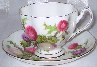 Queen Anne - Dundee Thistle  - Teacup Set