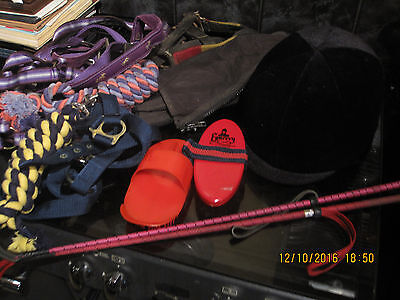 Horse Riding Equiptment Champion Junior Plus Helmet , Reins Brushes And More