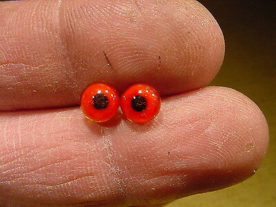 a pair vintage solid Glass Eyes size 6 mm age 1910 for doll bears taxidermy 353