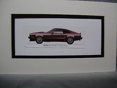 1978  Ford Mustang ll King Cobra     From  50 Year Anniversary Exhibit by artist