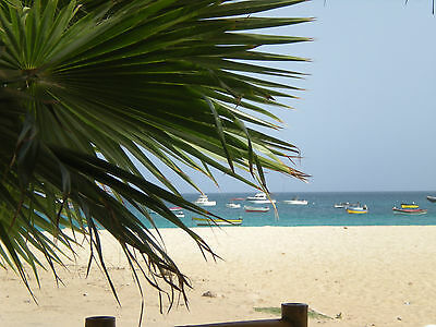 Sunshine Holiday Apartment - Self Catering