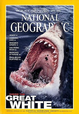 NATIONAL GEOGRAPHIC - 2000 April - Inside the Great White