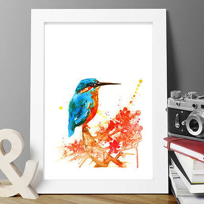 Kingfisher Birds Watercolour Painting Original Print Artist Signed