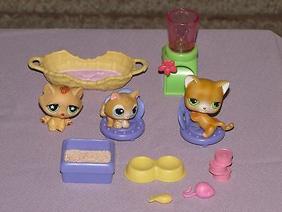 Littles Pet Shop Cat Family With 9 Accessories