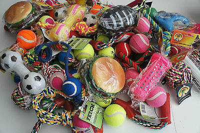 Large Dog Toy Selection Box Of Ten Assorted Dog Toys Squeaky Rope Fetch Toys