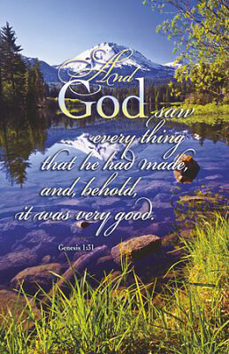 Bulletin-And God Saw Every Thing That He Had Made