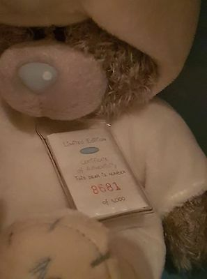 Limited Edition Blue Nose Bear, Me To You Costume Bear - Polar Bear