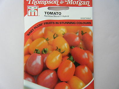 Seeds Fruit T&m Tomato Rainbow Blend  F1 Hybrid  Seed Rrp £2.99