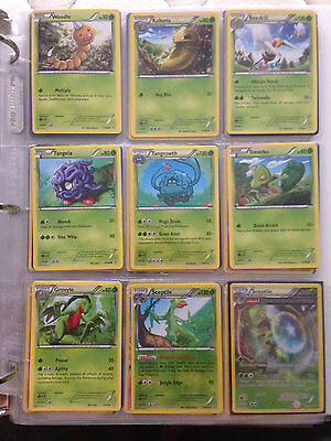 Pokemon XY Primal Clash Near Complete Set (Excellent to Near Mint)