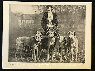 "1934 Dog Print / Bookplate - GREYHOUND, Mrs Kempton, ""Mick the Miller's"" Owner"