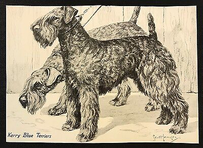 1934 Dog Print / Bookplate - KERRY BLUE TERRIERS, by Scott Langley