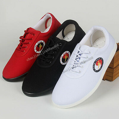 Unisex Wu shu Martial Arts Tai Chi Quan Wing Chun Training Kung Fu Canvas shoes