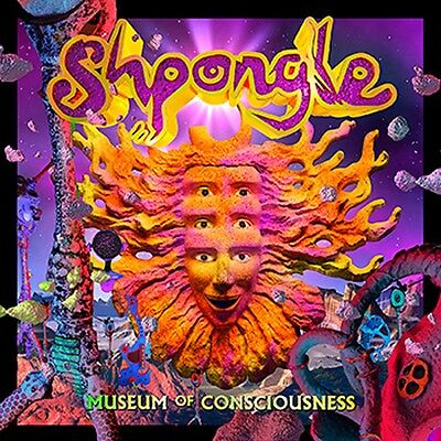 Shpongle - Museum Of Consciousness Vinyl LP LTD Edition 1st Press 3D Cover New