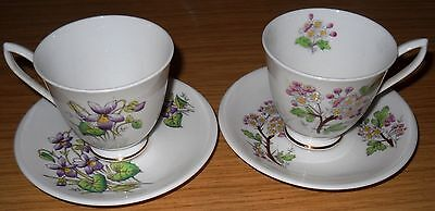 2/Royal Albert Cup & Saucer/Flower Of The Month/Violet&May Hawthorn