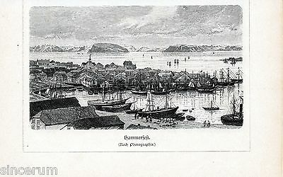 Hammerfest + Nordkapp 1897 xylography North Cape Norge