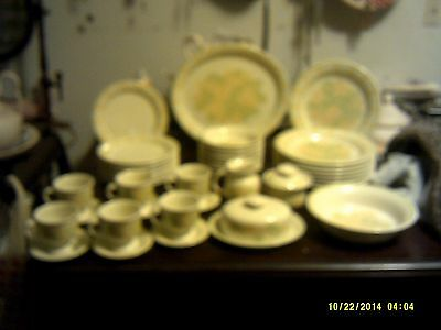 Franciscan Picnic Pattern Earthenware Dinnerware and Serving Pieces - 40 Pieces