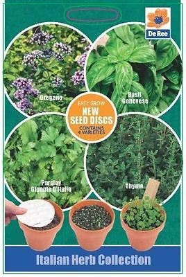 SEED DISC Collections - ITALIAN HERB Seeds - OREGANO, BASIL, PARSLEY & THYME