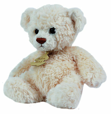 Histoire d'Ours ours calin 1436