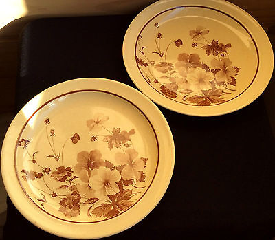 CROWN LYNN, The Hostess Selection SPRING x2 Dinner plates. Made in New Zealand