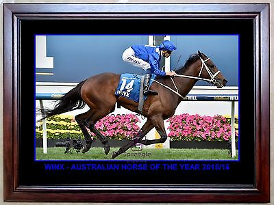 Winx 'australian Horse Of The Year' Action Horse Racing Photo Print Or Framed