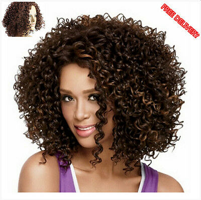 Ladies Kindy Curly Afro Brown Medium Synthetic Hair Full Wig For Black Women UK