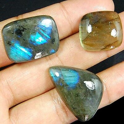 91 Cts Aaa Magnificent Natural Flashy Lot 3 Pc Labradorite Loose Gemstone Cabs