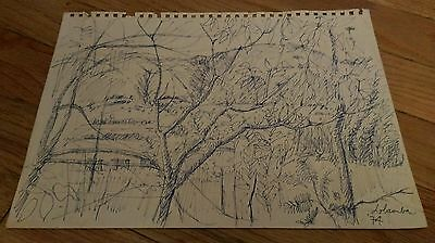 Vintage 1974 pen and ink sketch of forest/trees/landscape Lobamba Swaziland art