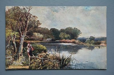 R&L Postcard: On the Arun, Sussex, Tuck Oilette Picturesque Counties 1906