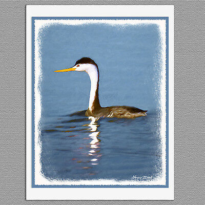 6 Clark's Grebe Wild Bird Blank Art Note Greeting Cards