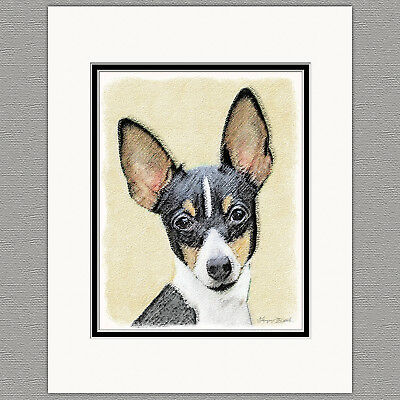 Toy Fox Terrier Dog Original Art Print 8x10 Matted to 11x14