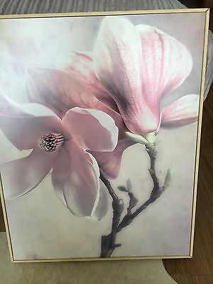 Contemporary Picture / Wall Art / Maple Framed Box Print - Flower (collect only)