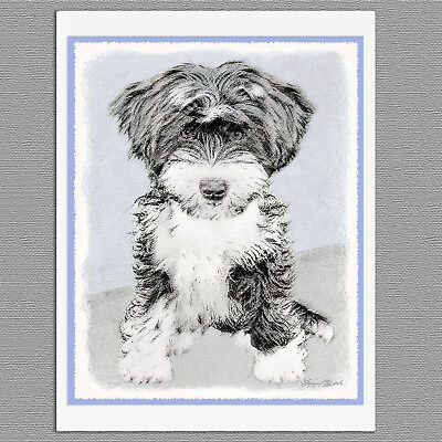 6 Tibetan Terrier Puppy Dog Blank Art Note Greeting Cards