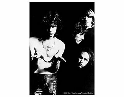 The Doors Band Photo Textile Poster Flag