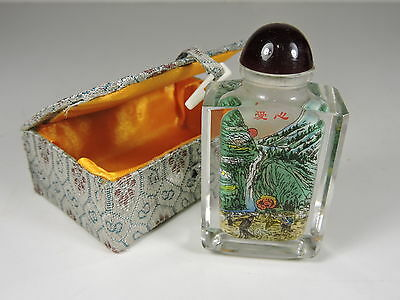 Chinese Snuff Bottle Reverse Painted Scene Inside Bottle With Box