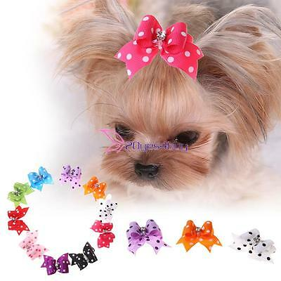 10x Bow Dog Hair Clips Small Puppy Rubber Band Hairpin Pet Grooming Accessories