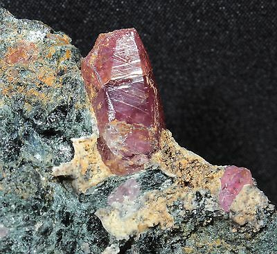 1.6 cm Terminated Ruby Crystal in Matrix from Winza, Tanzania