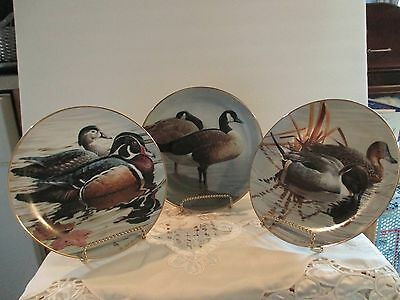Set Of Three Water-Bird Collector Plates