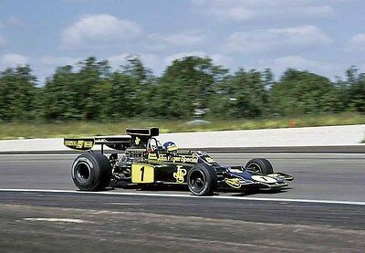 Ronnie Peterson, 1974 French Grand Prix, 10 x8 Unmtd photo