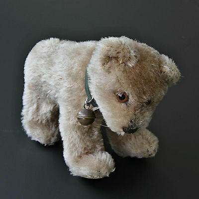 Steiff Jungbär ca. 1950-1972 sehr selten - extremely rare young bear