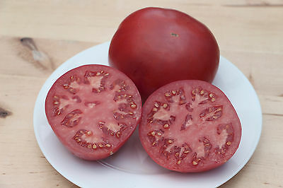 PINK GIANT - 50+ Heirloom Organic Tomato seeds - Combined Shipping