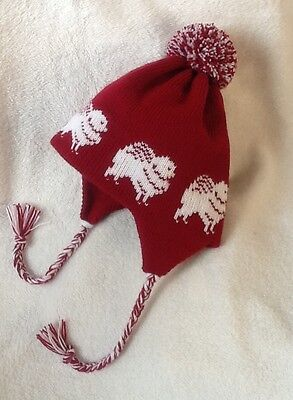 POMERANIAN  WHITE dog knitted lined RASPBERRY ADULT SIZE  TRAPPER EAR FLAP HAT