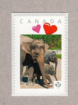 ELEPHANT FAMILY  personalized postage stamp MNH Canada 2017 [p17-01s4]