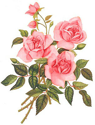 XL PinK GarDeN TeA RoSeS ShaBby WaTerSLiDe DeCALs ~FuRNiTuRe SiZe~