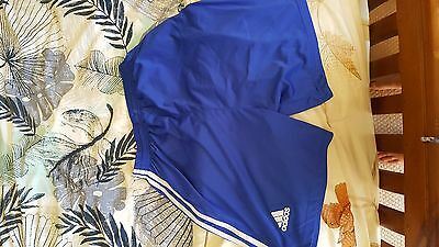 Chelsea Shorts bought as a Large but can't see a label Adidas Hazard 10