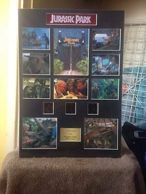 Jurassic Park A3 film cell display 7 DAY SALE