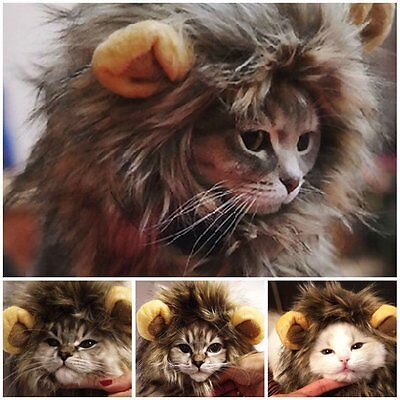 Furry Pet Hat Costume Lion Mane Wig For Cat Halloween Dress Up With Ears A^^